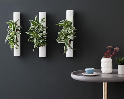 Shoptest for Pflanzen wanddeko